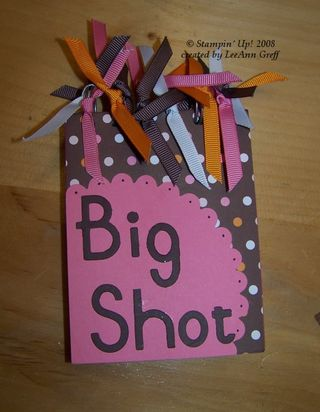 Big shot book cover