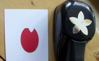Tulip punch art tut