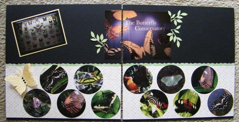 Sept 09 Scrap Club Butterflies