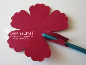 Blossom rose petal
