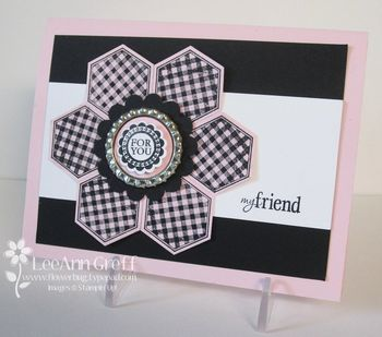 Six sided sampler pink gingham