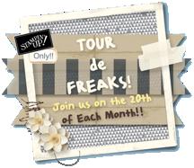 Tourdefreaks 2013