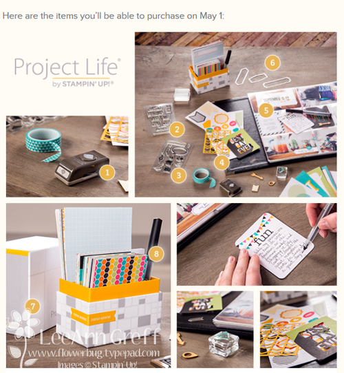 Project life samples