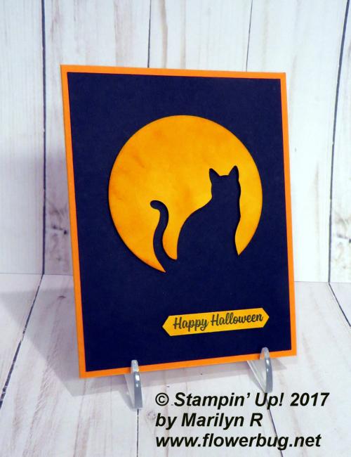Cat & moon silhouette