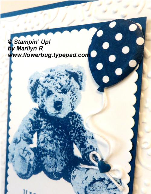 July Baby Bear close up