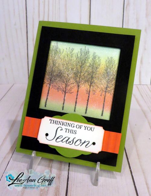 Winter woods framed