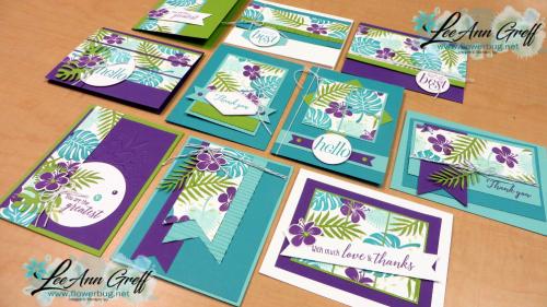 Tropical 5 sheet wonder