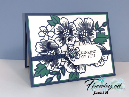 June Jacki Blossoms in Bloom