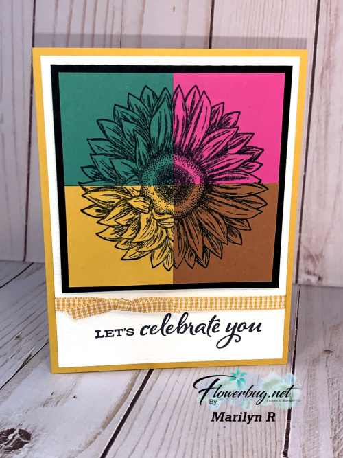 Celebrate Sunflowers Marilyn In Colors