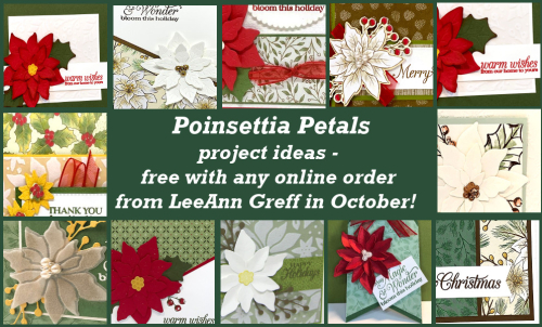 Poinsettia Petals projects
