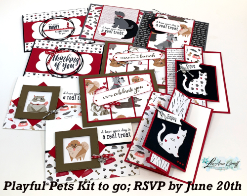 June Playful Pets kit
