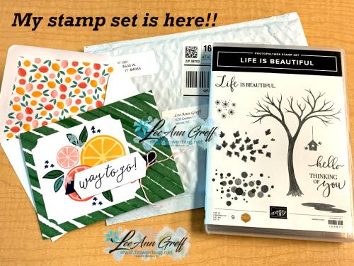 Life is Beautiful set & card