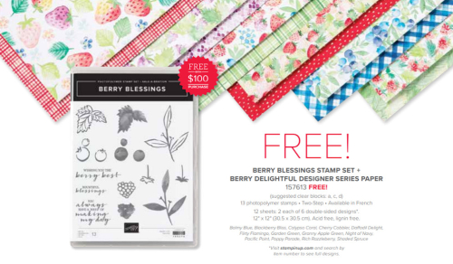 Berry Delightful bundle